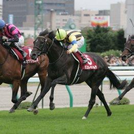 【札幌記念】3番人気が大不振 「第4の馬」を探せ