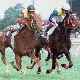 大激戦の00年ダービー馬 アグネスフライト