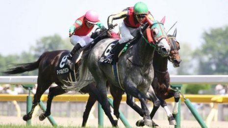 【大谷の土曜競馬コラム・日本海S】