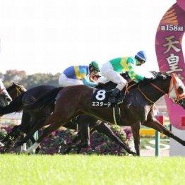 【飯島の土曜競馬コラム・稲妻S】