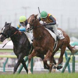 【武田の土曜競馬コラム・札幌2歳S】