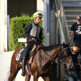 【橘の日曜競馬コラム・ローズS】