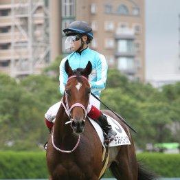 【藤岡の月曜競馬コラム・JRAアニバーサリーS】