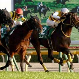 【飯島の月曜競馬コラム・セントライト記念】