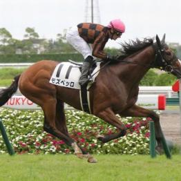 【大谷の月曜競馬コラム・セントライト記念】