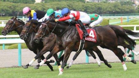 トライアル勝ち馬2頭の次走を占う