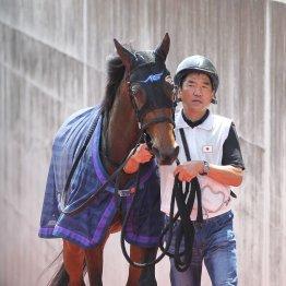 【薮中の土曜競馬コラム・夕月特別】