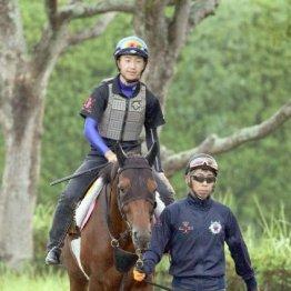 【日曜中山11R・オールカマー】出走全馬の特選情報