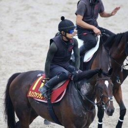 【秋華賞】出走全馬の特選情報