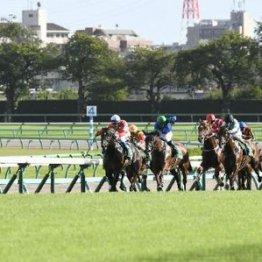 【大谷の月曜競馬コラム・府中牝馬S】
