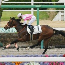 【レスキュー隊の月曜競馬コラム・東京12R】