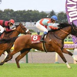 【府中牝馬S】スカーレットカラー直線一気で重賞初制覇