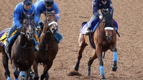 【天皇賞1週前追い切り】アーモンドアイ内からスパッと2馬身先着