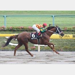 スレイプニルSは2馬身差の快勝