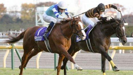 【ジャパンC】フルゲート割れ+外国馬ゼロでも3世代のダービー馬が揃い踏み