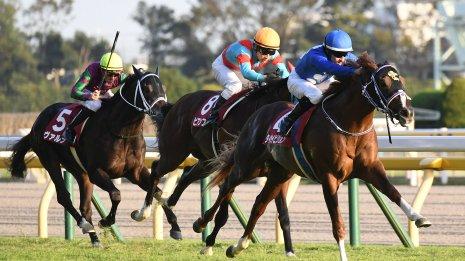 【東京スポーツ杯2歳S】2歳戦で絶好調の2厩舎に注目