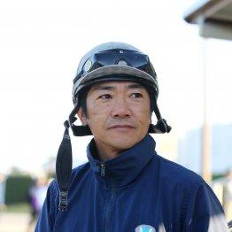 【木津の日曜競馬コラム・マイルCS】