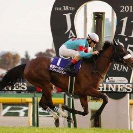 【ジャパンC】今年のGⅠ勝ち馬不在で馬券的妙味たっぷり 一歩リードは天皇賞組のワグネリアン、ユーキャンスマイル
