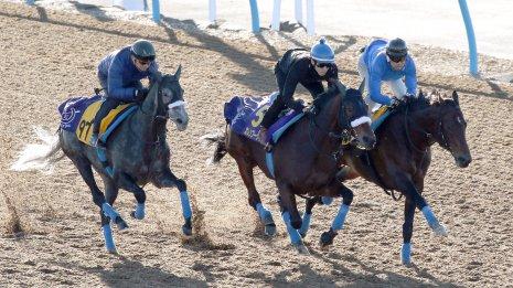 【ジャパンC】カレンブーケドール年長牡馬に挑戦状 秋3戦目で初めてウッドへ