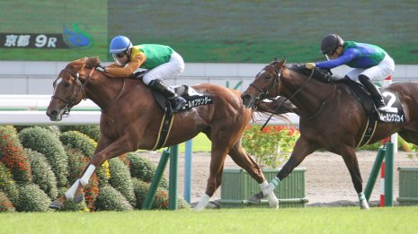 【京都2歳S】新種牡馬エピファネイア産駒ロールオブサンダーに妙味あり