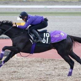 【亀井の土曜競馬コラム・京都2歳S】
