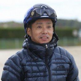 【木津の日曜競馬コラム・ジャパンC】