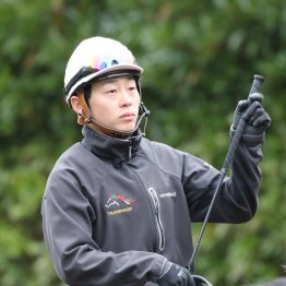 【木津の日曜競馬コラム・南総S】