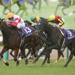【阪神ジュベナイルF】新馬→重賞の2戦2勝馬3頭の戦いが見どころ