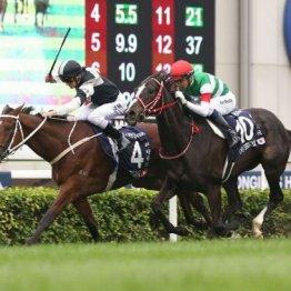 【香港国際競走】アーモンドアイを欠いても4鞍ともチャンスあり