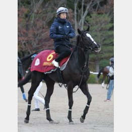 先週は藤岡佑が騎乗