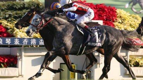【香港国際競走】日本馬3勝で今年の海外GⅠは8勝 これじゃあ外国馬が来るわけがない