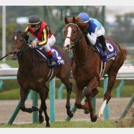 昨年の勝ち馬アドマイヤマーズは日曜に香港でGⅠ勝ち