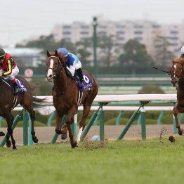 【朝日杯フューチュリティS】要チェック穴馬3頭