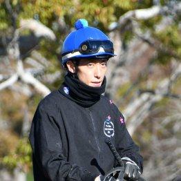 【木津の日曜競馬コラム・有馬記念】