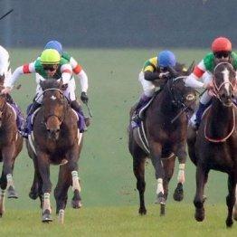 【有馬記念】②③着とはいえ勝ち馬ははるか前 3歳馬2頭はどう評価すべきか