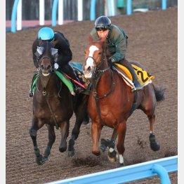 サンクテュエール(左)は古馬オープン馬と併せ馬
