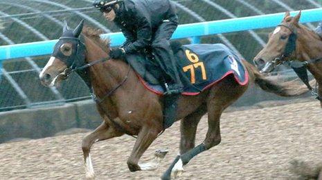 【京成杯】2歳馬離れしたハイパフォーマンスはまるでサイレンススズカ