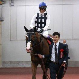 【東海S】昨年の勝ち馬インティ負けられない