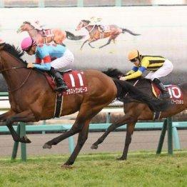 【アメリカJCC】GⅠ馬ブラストワンピース貫録勝ち