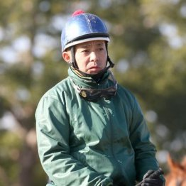 【木津の日曜競馬コラム・東京新聞杯】