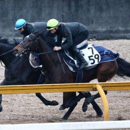 【京都記念】別馬のように成長したクロノジェネシスから馬単勝負