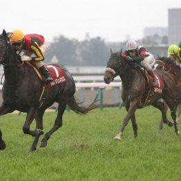 【京都記念】グレード制導入後初の牝馬ワン・ツー ①着クロノジェネシスと②着カレンブーケドールは次も買える