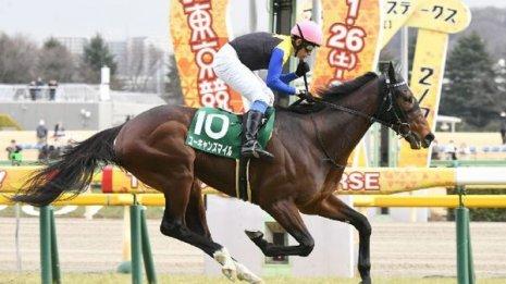 他にも今週末はダイヤモンドS、京都牝馬S、小倉大賞典の3重賞