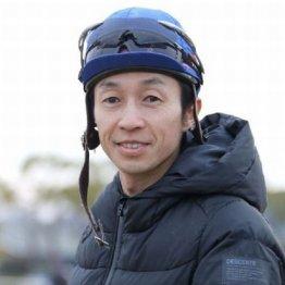 【木津の日曜競馬コラム・フェブラリーS】