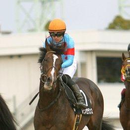 阪神で3歳オープン特別が2鞍 春に向けて賞金を加算するのは