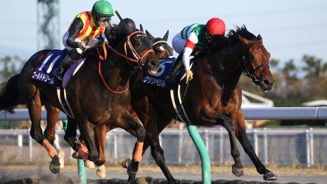 第1回サウジカップで問われる日本ダート馬の真価と進化