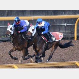 カリオストロ(左)は1馬身遅れたが、問題ない動き