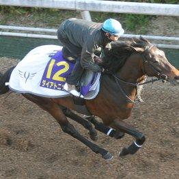 【高松宮記念】安田隆厩舎2頭出し ダイアトニック一発あるぞ