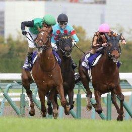 【高松宮記念】③着ダイアトニック加害馬が被害馬に