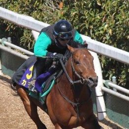 【大阪杯】出走馬の特選情報